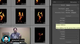 Using Lightroom for Search Engine Optimization of Images